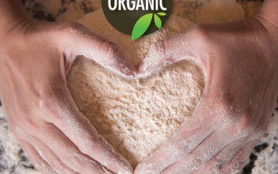 RedBrick Pizza Kitchen Café Rolls Out Organic Pizza Dough